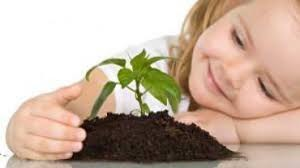 Little girl with seedling